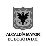 logos bn-13